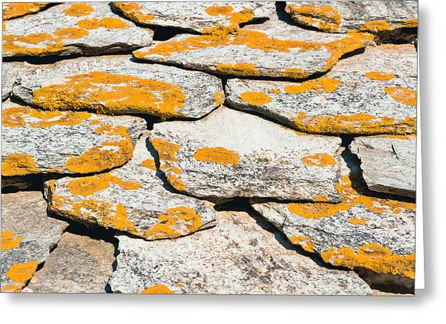 Rocks With Lichen Greeting Card