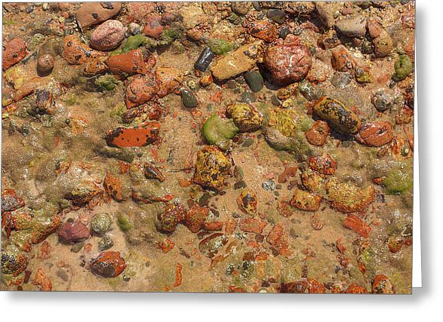 Rocky Beach 5 Greeting Card by Nicola Nobile