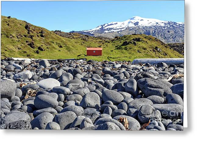Rocky Beach Iceland Greeting Card