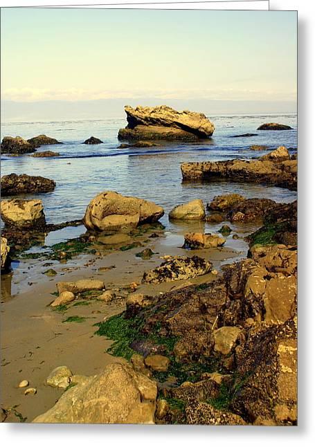 Rocky Beach Greeting Card by Marty Koch