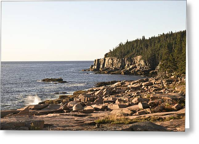 Rocky Coast Of Acadia Greeting Card by Frank Russell