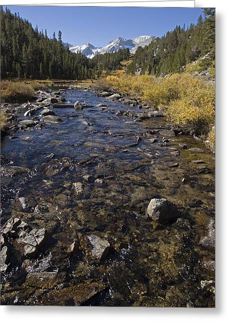 Rocky Creek In Little Lakes Valley Greeting Card