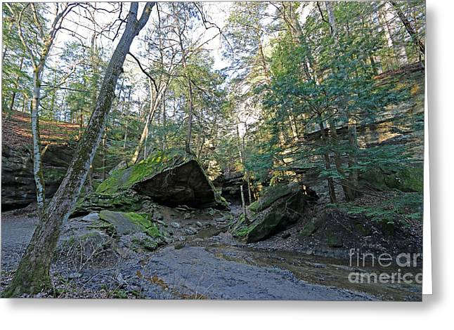 Rocky Hollow At Turkey Run Sp Greeting Card