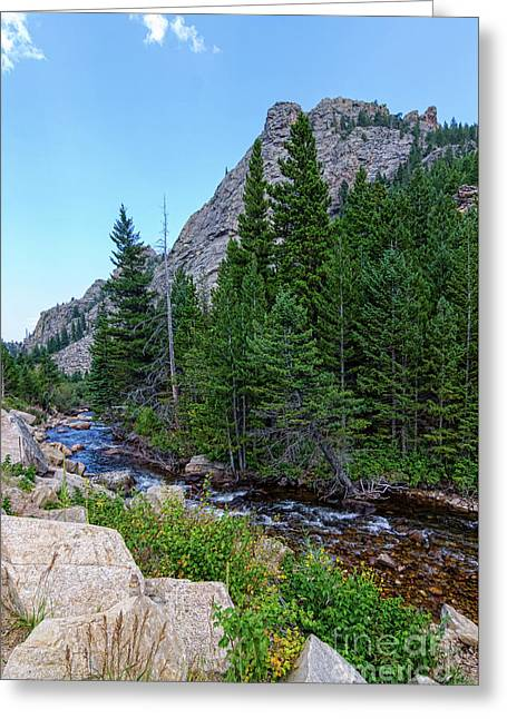 Greeting Card featuring the photograph Rocky Mountain Chipmunk Paradise by James BO Insogna