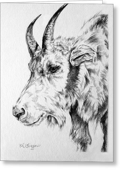 Rocky Mountain Goat Greeting Card by Derrick Higgins