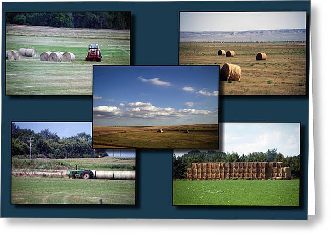 Rocky Mountain Hay Rolls Collage 02 Greeting Card by Thomas Woolworth