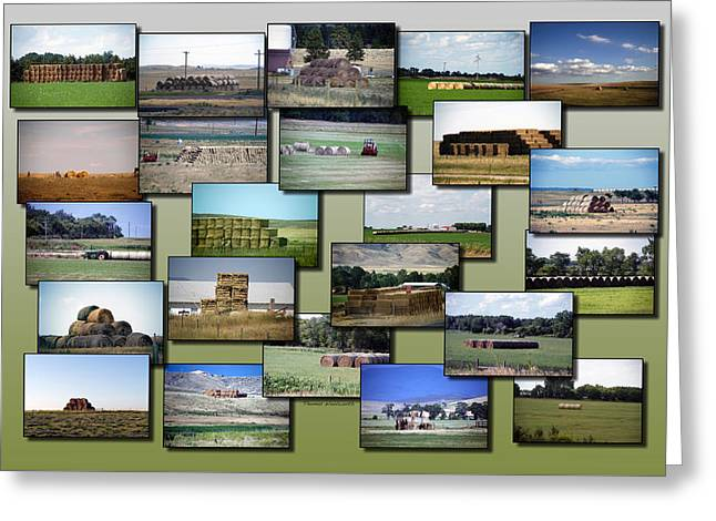 Rocky Mountain Hay Rolls Stacks Collage Greeting Card by Thomas Woolworth