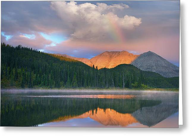Rocky Mountain Greeting Card by Tim Fitzharris