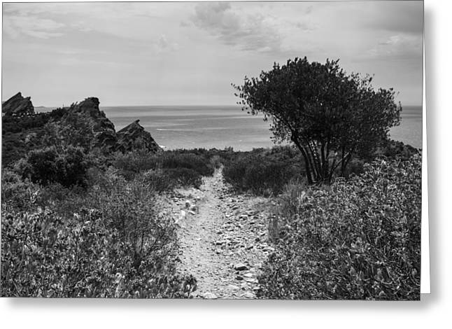 Rocky Path To The Sea In Mono - Square Greeting Card by Georgia Fowler