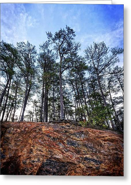 Greeting Card featuring the photograph Rocky Pines by Alan Raasch