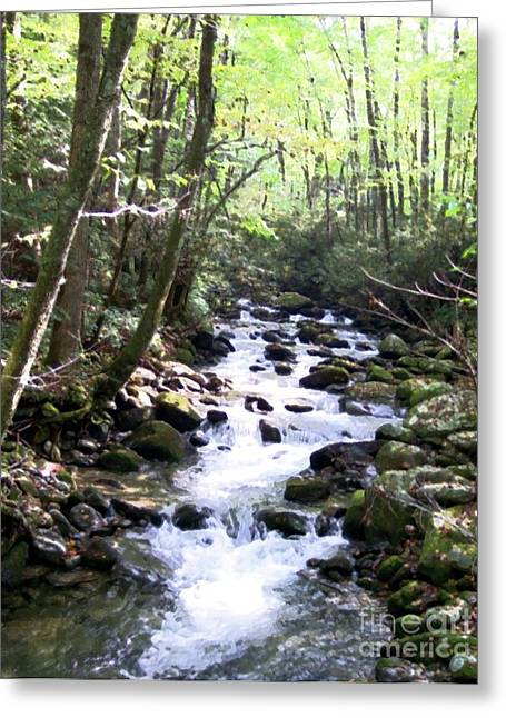 Greeting Card featuring the mixed media Rocky Stream 6 by Desiree Paquette