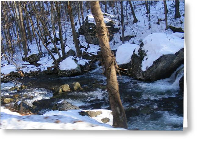 Rocky Stream Greeting Card by James and Vickie Rankin