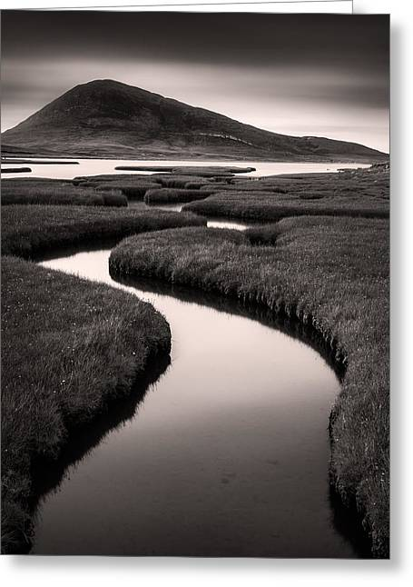 Northton Saltmarsh Greeting Card by Dave Bowman
