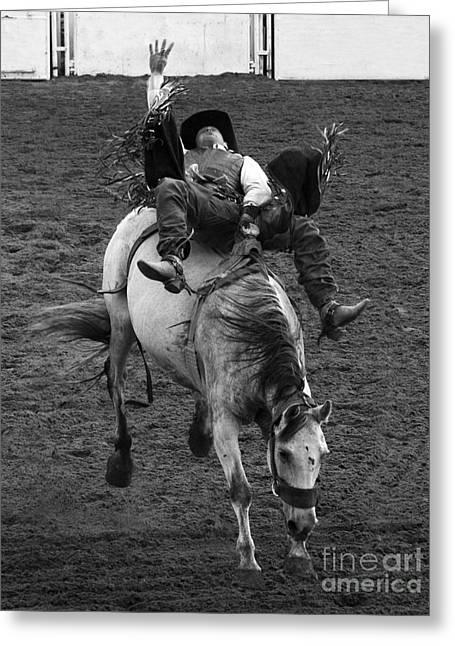 Rodeo Bareback Riding 1 Greeting Card