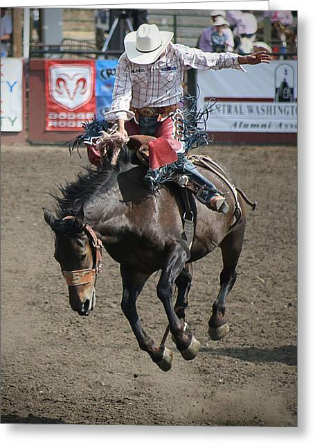 Rodeo Buck Greeting Card