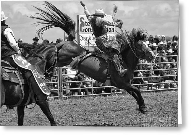 Rodeo Saddleback Riding 15 Greeting Card