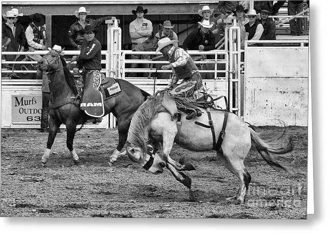 Rodeo Saddleback Riding 2 Greeting Card