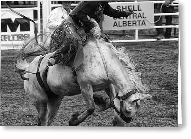 Rodeo Saddleback Riding 3 Greeting Card