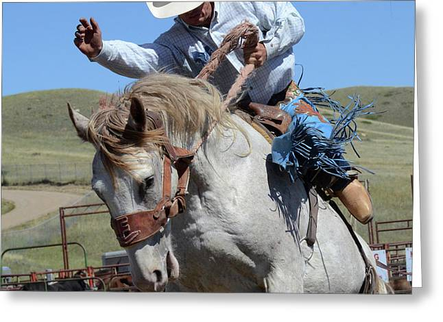 Rodeo Stars 18 Greeting Card by Bob Christopher