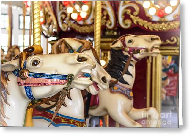 Roger Williams Park Carousel Greeting Card