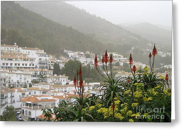 Rojo In The Pueblos Blancos Greeting Card by Suzanne Oesterling