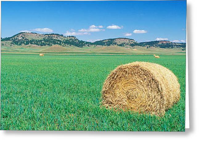 Rolled Hay Bale In Field With Hills Greeting Card by Panoramic Images