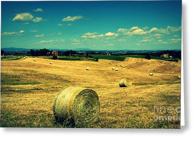 Rolling Fields Of Tuscany Greeting Card by Lainie Wrightson
