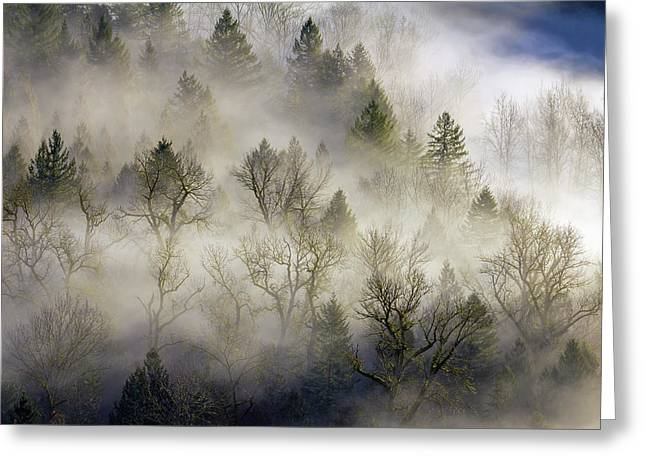 Rolling Fog In Sandy River Valley Greeting Card by David Gn