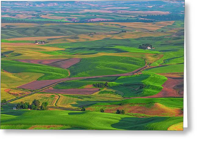 Rolling Green Hills Of The Palouse Greeting Card by James Hammond