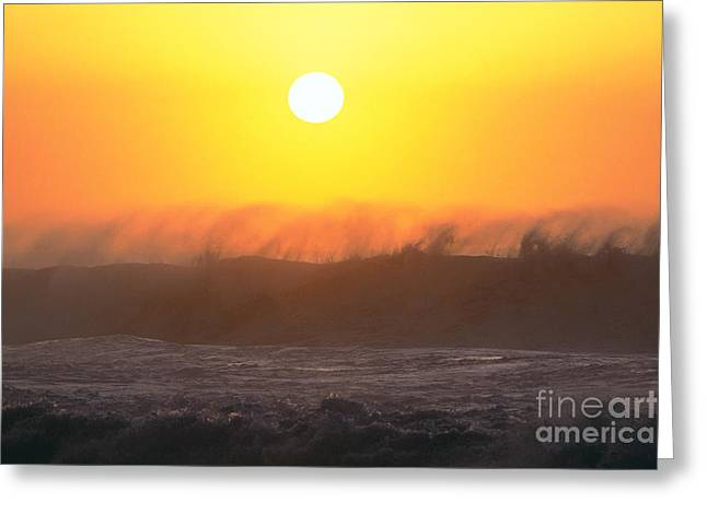 Rolling Waves Greeting Card by Vince Cavataio - Printscapes