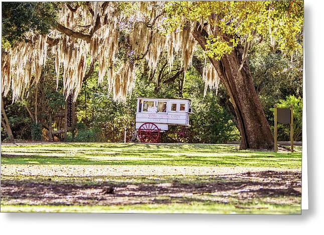 Roman Candy Cart Under The Oaks Greeting Card