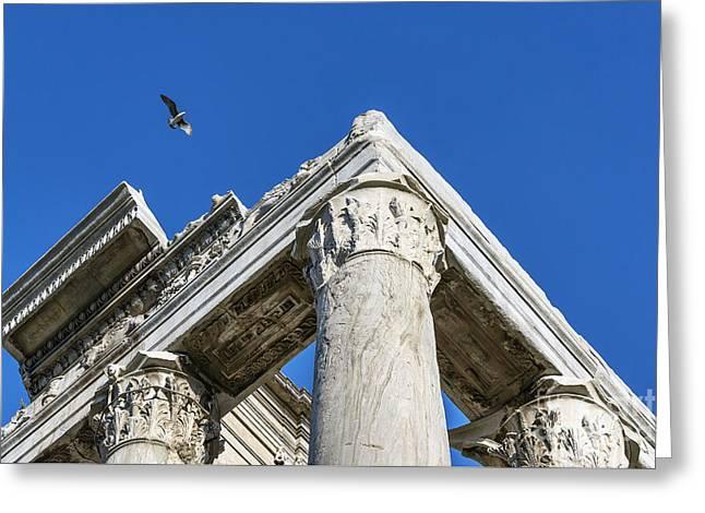 Roman Forum Detail Greeting Card by John Greim