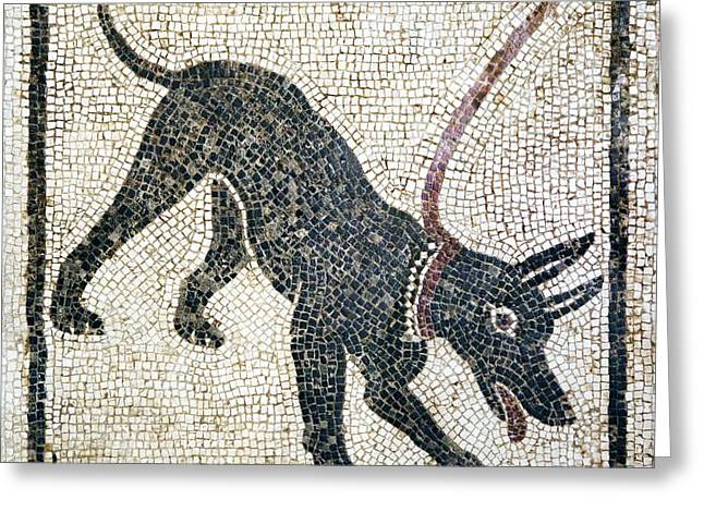 Warning Sign Greeting Cards - Roman Guard Dog Mosaic Greeting Card by Sheila Terry