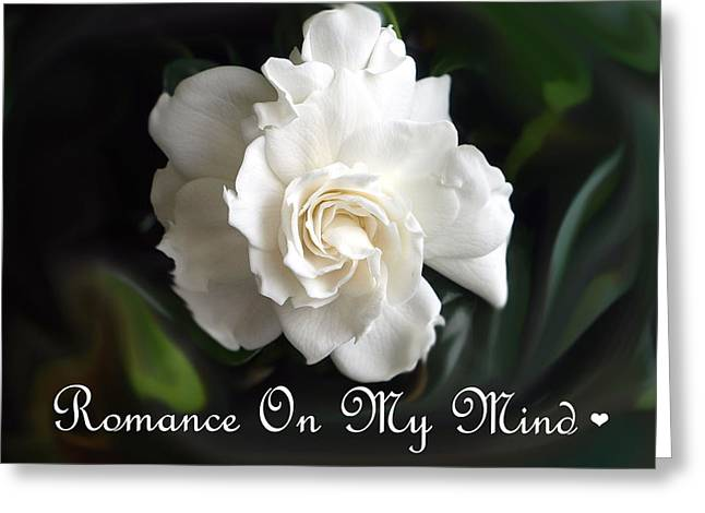 Romance Rose Greeting Card by Kim