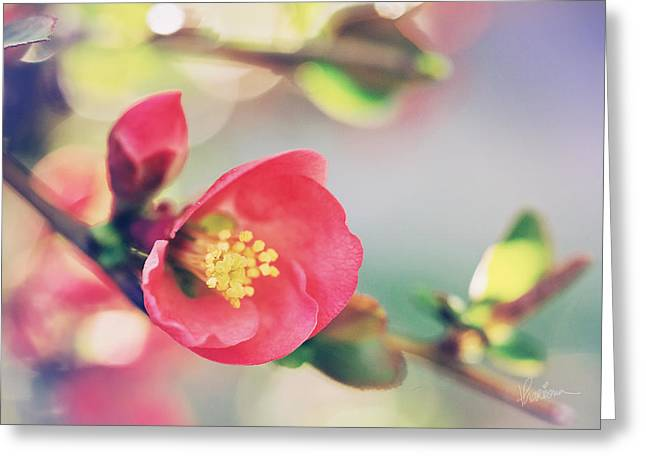 Romancing Spring II Greeting Card
