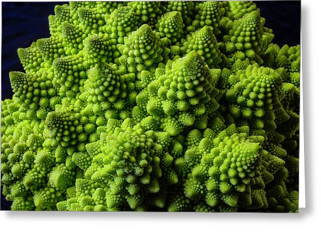 Romanesco Broccoli Greeting Card by Garry Gay
