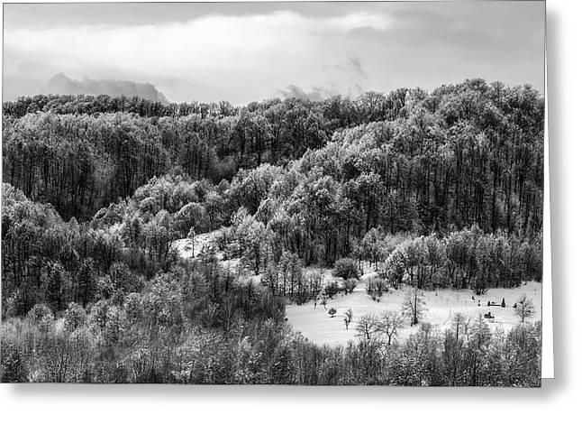 Romanian Winter Vista Greeting Card by Unsplash - Ioan Schlosser