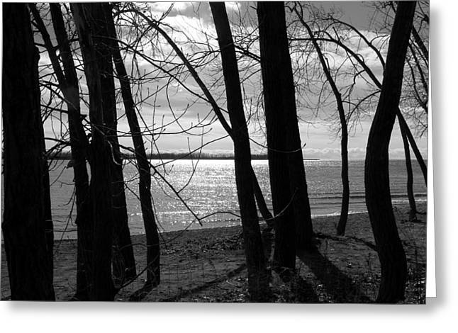 Greeting Card featuring the photograph Romantic Lake by Valentino Visentini