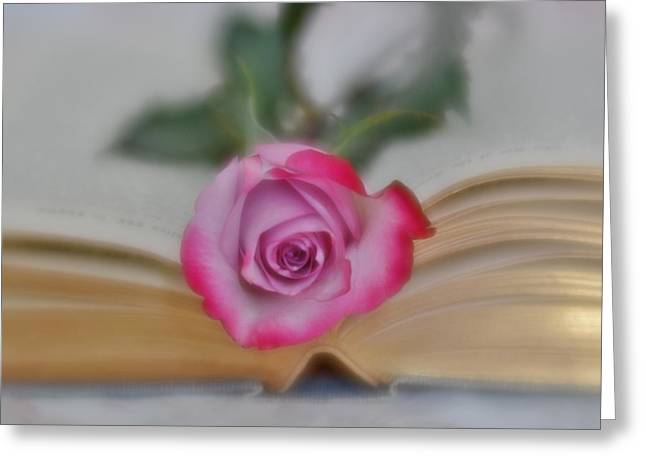 Greeting Card featuring the photograph Romantic Read 2 by Diane Alexander