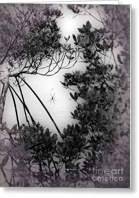 Greeting Card featuring the photograph Romantic Spider by Megan Dirsa-DuBois