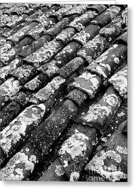 Roof Tiles Greeting Card by Gaspar Avila