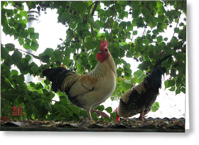 Rooftop Roosters Greeting Card