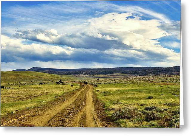 Room To Roam - Wyoming Greeting Card by L O C