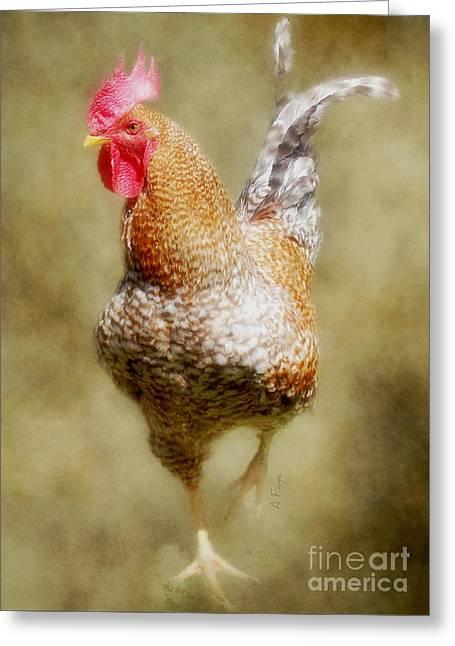 Rooster Jr. Greeting Card by Anita Faye