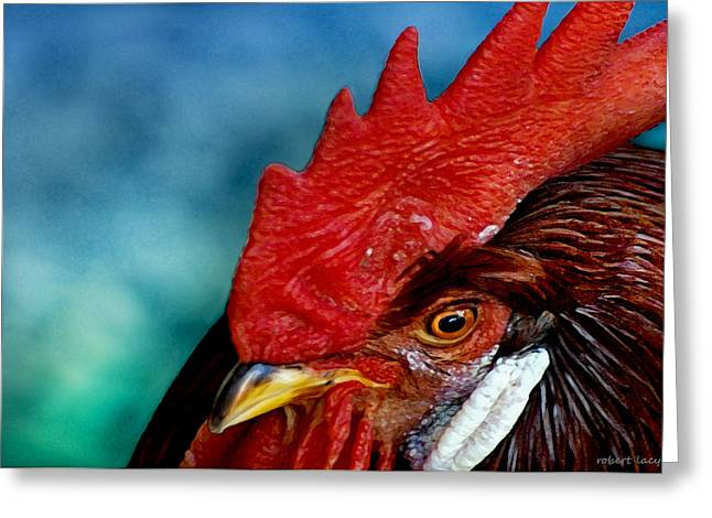 Rooster Greeting Card by Robert Lacy