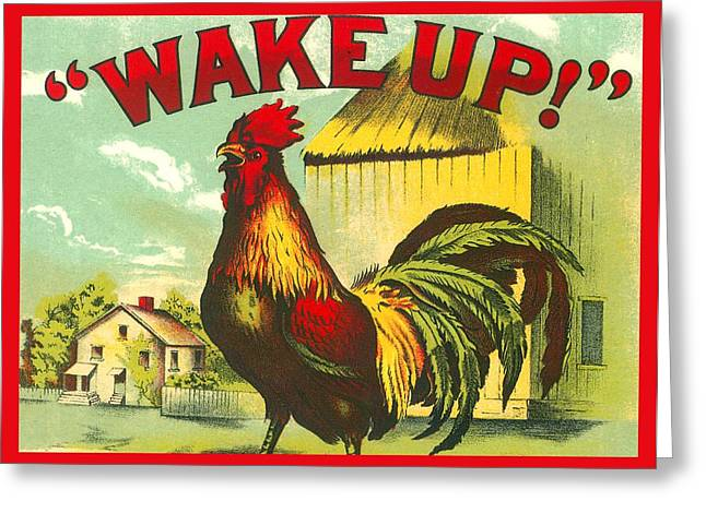 Rooster Wake Up Drawing By Marianne Dow