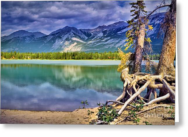 Roots And Reflections Greeting Card