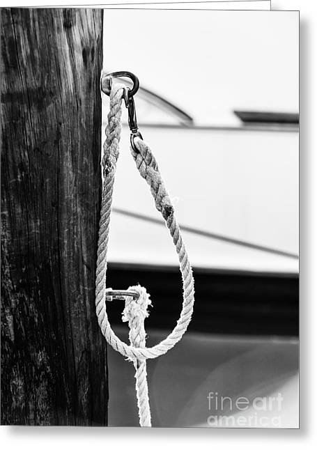 Rope Fence Fragment In Harbour Greeting Card by Elena Elisseeva