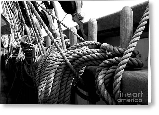 Ropes At The Ready Greeting Card by Lexa Harpell