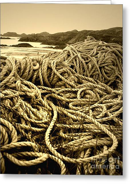 Ropes On Shore Greeting Card